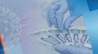 Започна масовото тестване за коронавирус на учителите във Варна