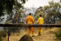 снимка 1 Опасност от пожари заради горещините в Австралия