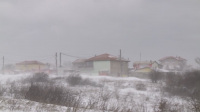 Частично бедствено положение е обявено във Варненско