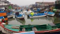 Рибари излязоха на мълчалив протест