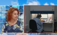 Вирусолог: 33 са случаите на британския вариант на COVID-19 в България