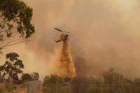 снимка 4 Силен вятър разгаря горския пожар в Австралия, опасността за хората остава