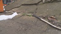"""Протест срещу опасни кабели в увеселителен парк в столичната градинка """"Света Троица"""""""