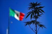 Мексико е на път да легализира марихуаната