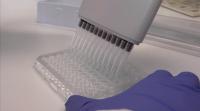 Очаква се пик на заразените с COVID-19 след 3 седмици