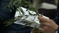Католиците в Раковски отбелязаха Палмова неделя при спазване на мерките