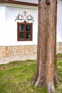 снимка 10 Дивотинският манастир - един от най-старите действащи манастири у нас (ГАЛЕРИЯ)