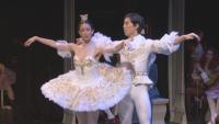 """Дългоочаквана премиера: """"Спящата красавица"""" на сцената на операта в Стара Загора"""