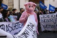 снимка 1 Протести в Италия: В Рим се стигна до сблъсъци