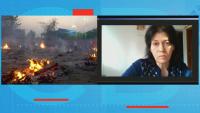 Българка в Индия: Тук всичко е много страшно