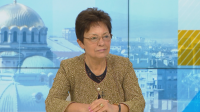 Ирена Анастасова, БСП: Делението на партии на статуквото и на протестите е изкуствено