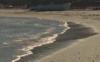 28 плажа във Варненска област са без стопани