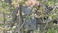 Мобилни камери следят за незаконни сметища в Силистренско