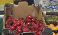 30 лв. удари килограмът на черешите в Бургас