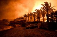 Силният вятър затруднява гасенето на пожарите в Гърция