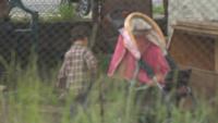 Защо майка изхвърли бебето си през прозорец в Златица? Версиите на роднините