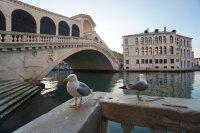 Известни личности подкрепиха апел за опазването на Венеция
