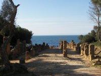 България бе избрана за член на Изпълнителния съвет на Океанографската програма на ЮНЕСКО