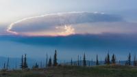 Канада изпраща военни подкрепления за справяне с пожарите