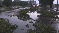 Проливен дъжд и градушка в Пловдив, дърво се стовари върху кола