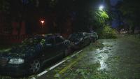 Тропическа буря парализира Цюрих