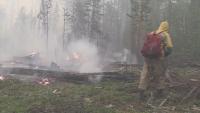 Мащабни горски пожари в Русия - над 400 активни огнища
