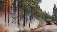 Хиляди евакуирани заради пожарите в Орегон