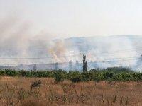 Пожарът край село Бучино е овладян