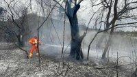 Обявиха извънредно положение в Сардиния заради горски пожари