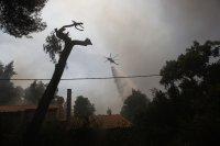 Разследват умишлен палеж на горски пожар край Атина