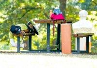 Жега в София: Кой как се справя с горещините? (Снимки)