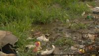 По зрителски сигнал: Защо втори месец питейна вода се разлива по улиците на Перник?