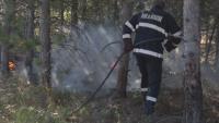 Пожарът в Сакар планина още не е потушен, няма данни за умишлен палеж
