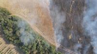 Радев изрази съболезнования за смъртта на горските служители, които загинаха в пожара край село Петрово
