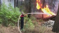 Шест са вече жертвите на горските пожари в Турция