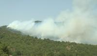 Пресечен е пожарът до границата с Република Северна Македония