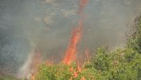 Потушен е пожарът край благоевградското село Бучино