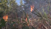 България може да помогне на Република Северна Македония в борбата с пожара в Кочани