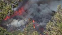 Евакуират туристи в Мармарис и Бодрум заради пожарите в Турция