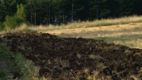 Как ще бъде ограничен рискът от пожари в земеделските площи в Пернишко