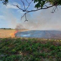 Нов пожар пламна в Пловдивско