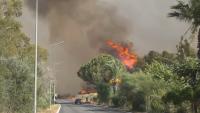 Голям пожар гори на Пелопонес