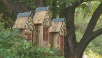 Защо в Разлог отвориха хотел за насекоми