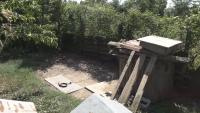 Изследват за бяс ротвайлера, нападнал хора в Долна Оряховица