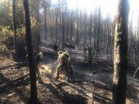Екипи на огнеборци и военни остават на терен заради пожара край село Михилци (СНИМКИ)