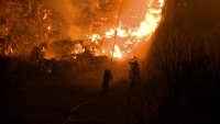 МВнР: Нови пожари от мълнии в Гърция, ситуацията остава сложна