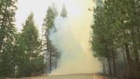 Продължава борбата с пожарите в Калифорния
