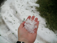 МЗХГ: Земеделците да подадат молби за щетите от градушката в Пловдивско