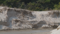 """След зрителски сигнал: Кой е виновен за унищожаването на пясъчни дюни в """"Албена""""?"""