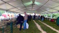 България и още шест държави настояват за бързо приемане на новата Обща селскостопанска политика